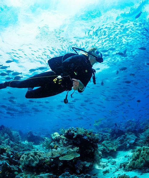 1539410164_scuba_diving_1.jpg