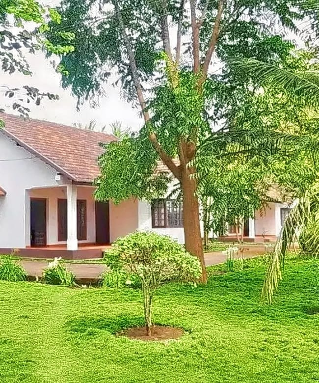 1484981330_cottage_stay_near_dubare_elephant_camp_coorg_-_old.jpg