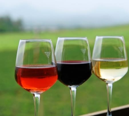 Wine Tour in Nashik