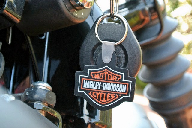 Harley_davidson_883_iron_2.jpg