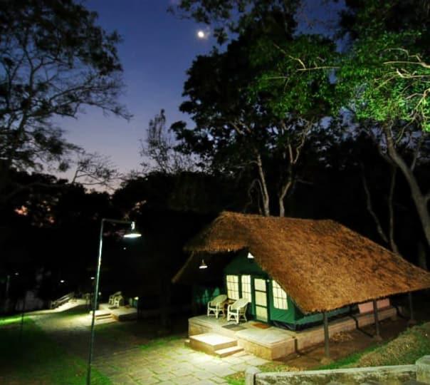 Night Stay in Kabini River Lodge