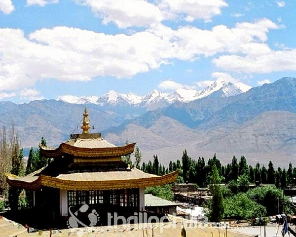 Stok_kangri_trek__ladakh_(3).jpg