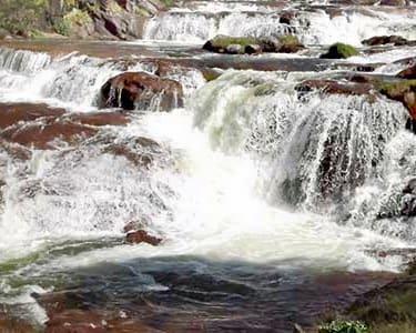 1 Day Sightseeing Tour of Pykara and Mudumalai