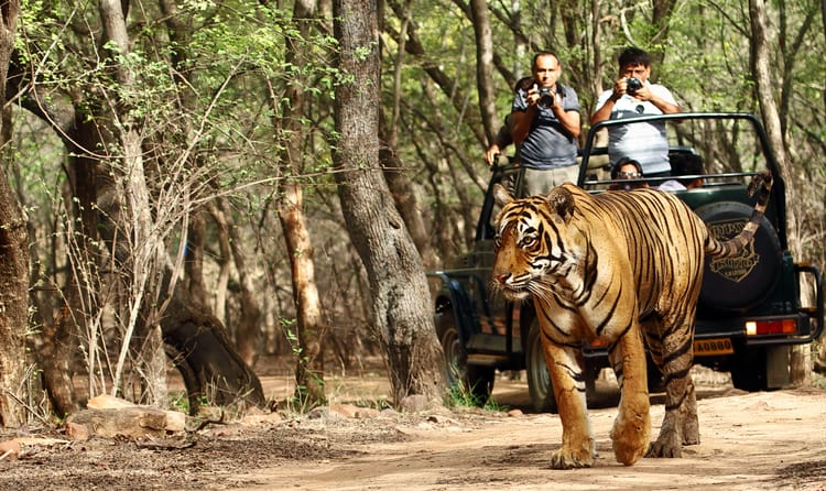 Aareman-Travels-Rajasthans-tour-packages