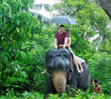 Elephant Safari and Village Tour in Habarana