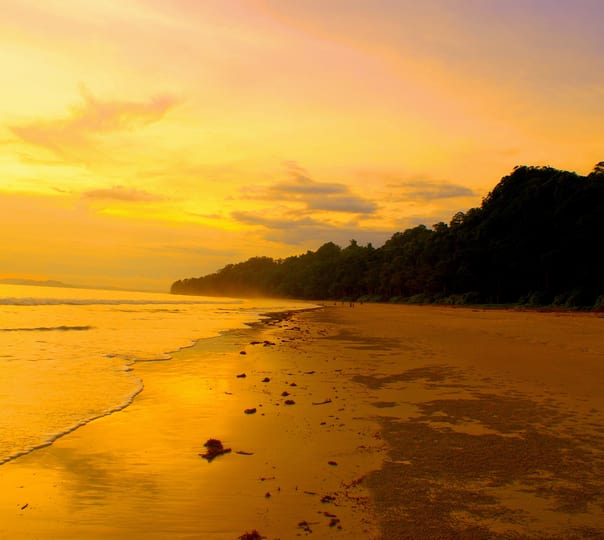 Best Andaman and Nicobar Honeymoon Packages: an Abode For Love Birds