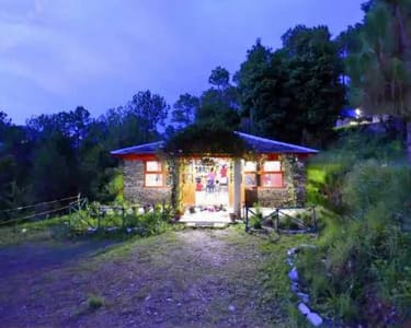 Forest Camping in Shimla's Junga - Flat 15% Off