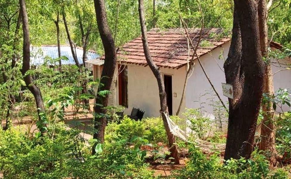adventure camping at badlapur barvi dam thrillophilia