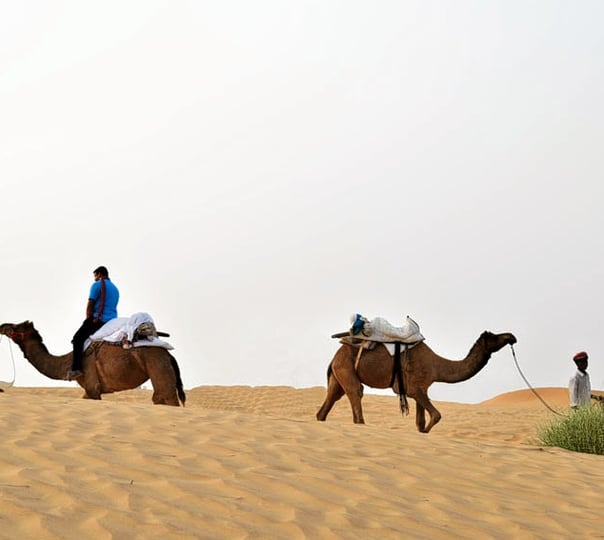 Camel Safari at Osian in Rajasthan