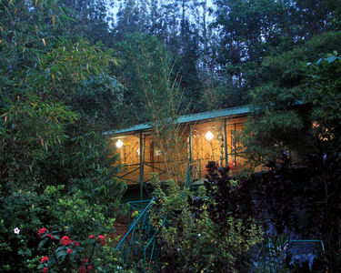 Nature Homestay Amidst The Hills, Chikmagalur - Flat 25% Off