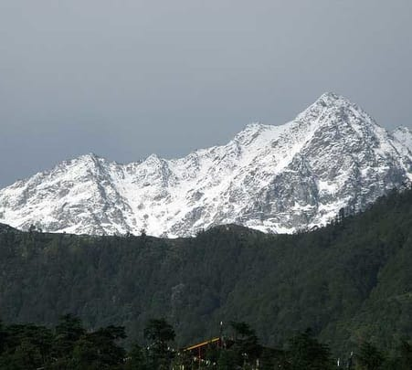 Half Day Sightseeing Tour at Mcleodganj and Dharamshala in a Car