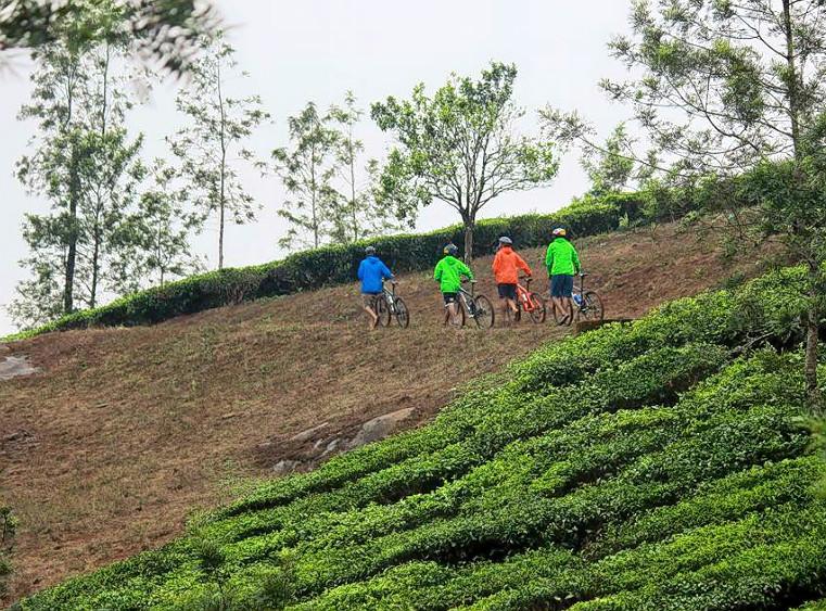 1476856688_cycling_in_wayanad_15.png