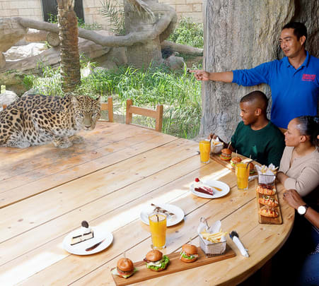 Lunch with Leopard in Abu Dhabi Flat 15% off