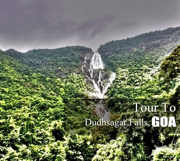 Dudhsagar Falls and Spice Plantation Full Day Tour