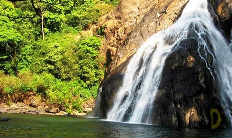 Dudhsagar Falls Trek
