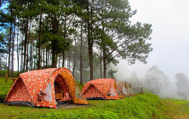 1492786598_camping_tent_at_doi_angkhang_mountain__chiangmai__thailand_(1).jpg