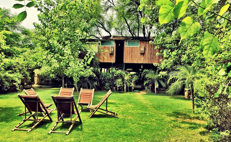 Luxury Stay At The Tree House Resort Jaipur Thrillophilia