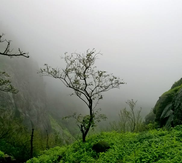 Trek to the Prabalgad Fort