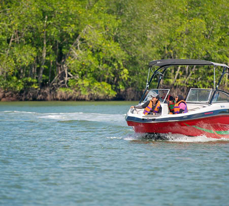 Mangrove Eco Safari Boat Ride in Malaysia