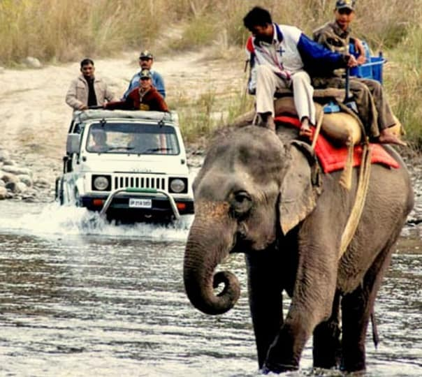Elephant Safari at Aroma Heavens Corbett