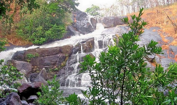 15 Best Places to Visit in Wayanad in 2 Days - 2019 (Photos)
