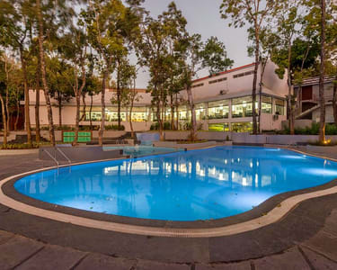 Siri Nature Roost Resort, Chikmagalur | Book Now @ 55% off