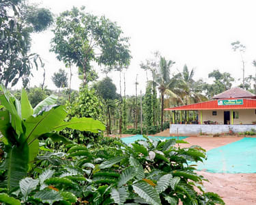 Coffee Plantation Homestay with Adventure Sports, Sakleshpur
