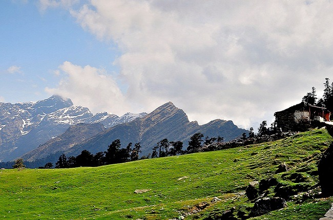 Chopta_-_chandrashilla_peak_2.jpg