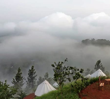 Camping in Tea Gardens of Wayand, Kerala