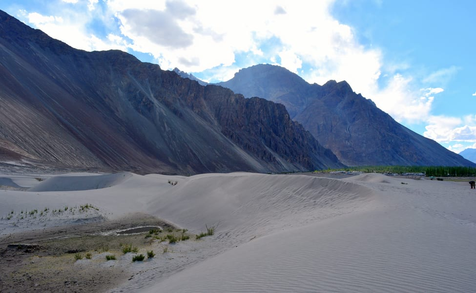 Women Only Sightseeing Group Tour Of Ladakh Thrillophilia