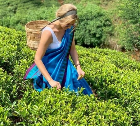 Private Tea Plucking and Tea Factory Tour