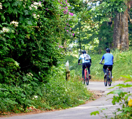 Adventure Trekking and Cycling in Coorg