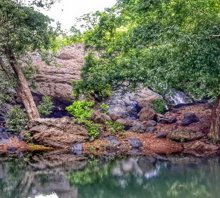 Yeoor Nature Trail in Thane