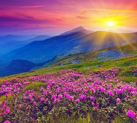 Valley of Flowers Trekking Package, Uttaranchal 2018