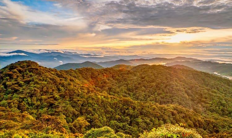 Mount Batu Brinchang