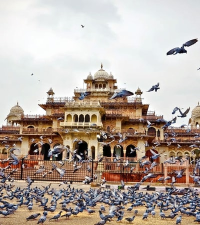 70 Best Tourist Places to Visit in Rajasthan (Photos & Reviews)