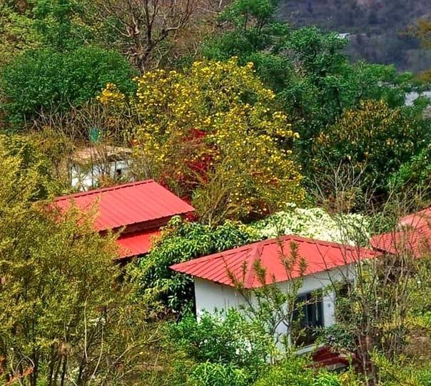 Stay in Resort near Kempty Falls