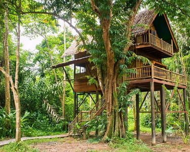 Valley View Tree House Stay near Chikmagalur