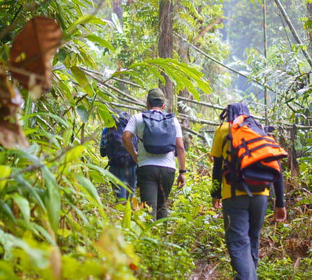 Adventure Camp at the Peak of Coorg Flat 22% off
