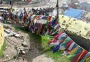 Himalaya_rohtang_139.jpg