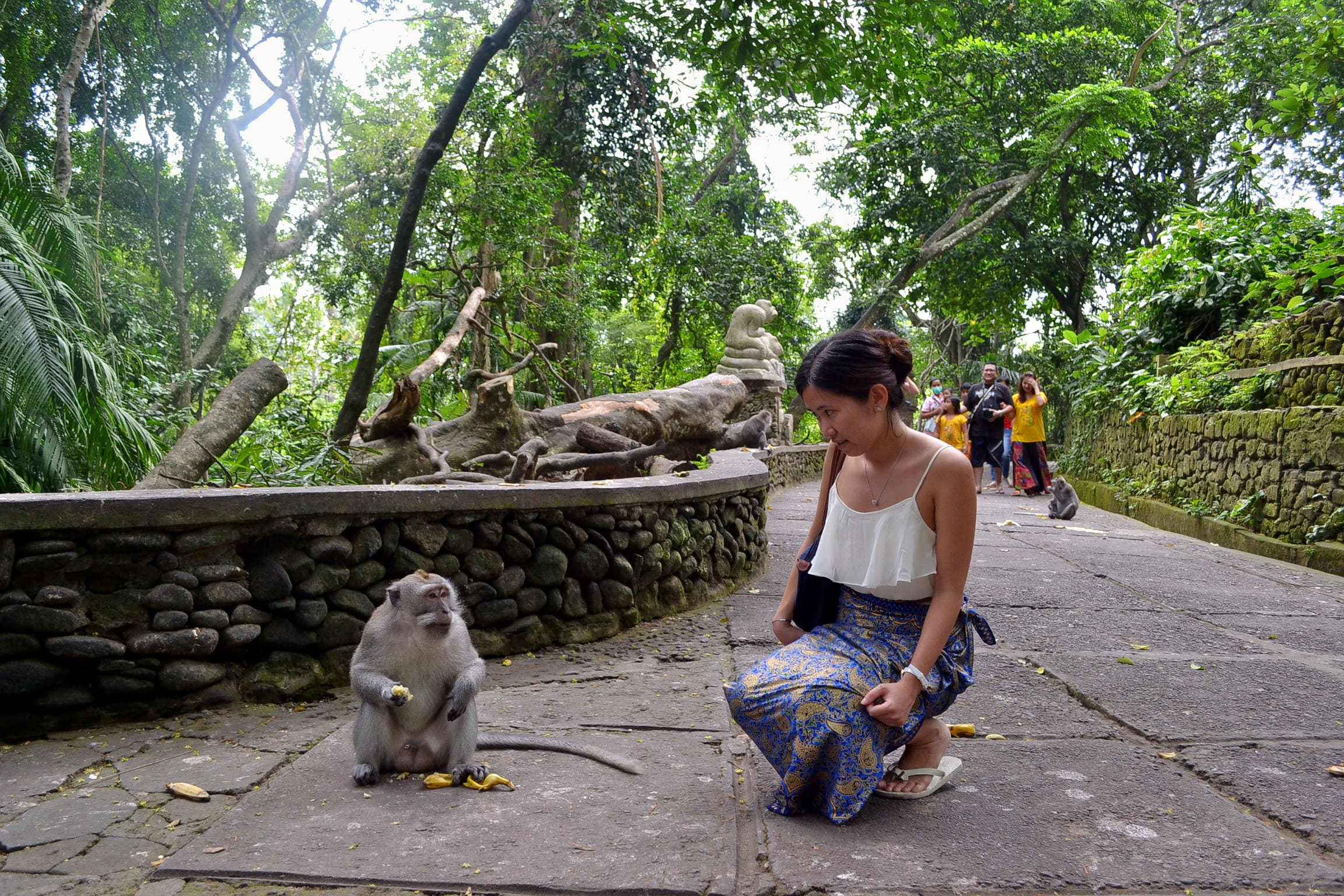 Have Fun at Ubud Monkey Forest