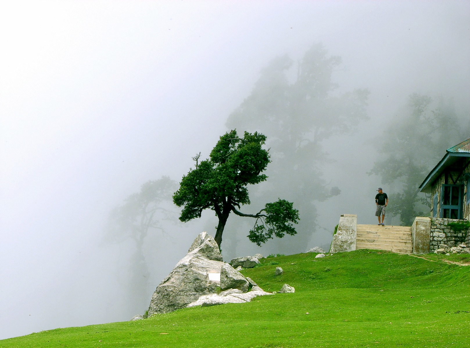 1468389108_cloudy_triund__above_mcleod_ganj__himachal_pradesh.jpg
