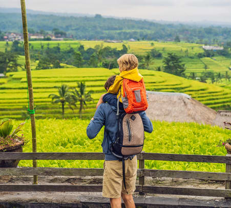 Jatiluwih Rice Terraces Tour with Ulun Danu Beratan Flat 18% off