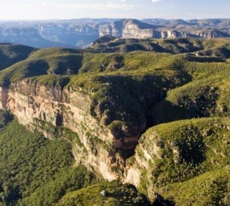 Blue Mountains, Wildlife and Cruise Tour in Australia
