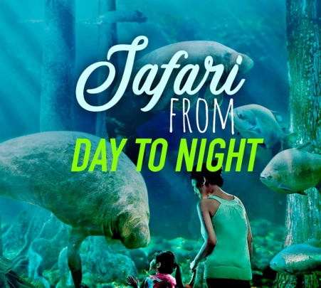 River Safari and Night Safari Combo Tour- Flat 17% off