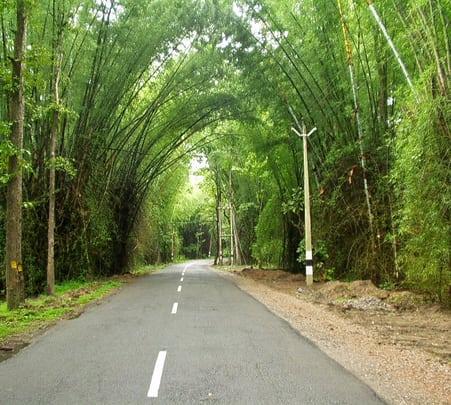 Weekend Getaway with Bamboo Craft Workshop in Wayanad