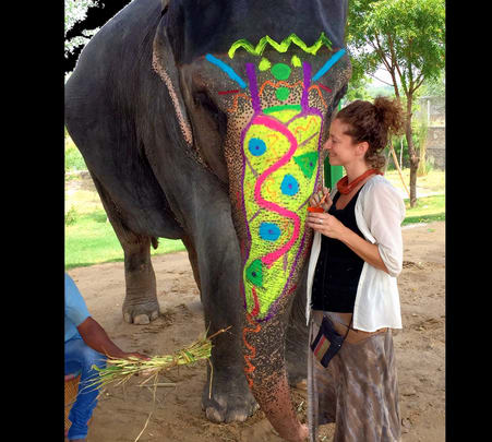 Elephant Activities in Jaipur-flat 27% off