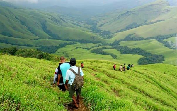 Mandalpatti-trek-coorg-tourism-entry-ticket-price.jpg