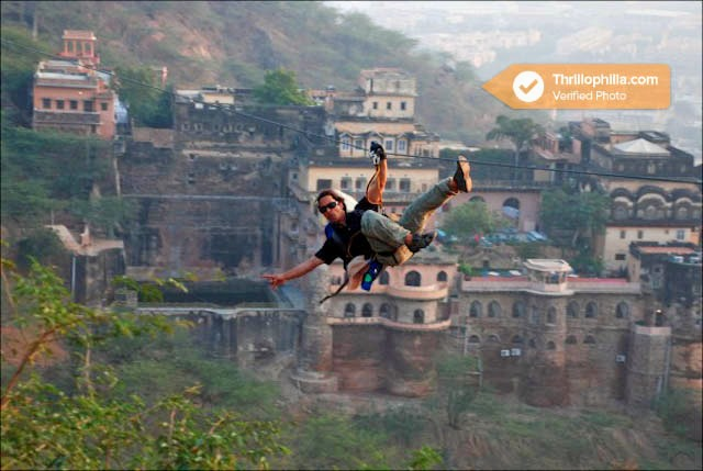 Neemrana_flying_fox_(2).jpg