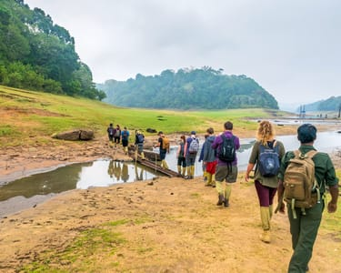 Tiger Trail Trekking in Periyar Wildlife Sanctuary